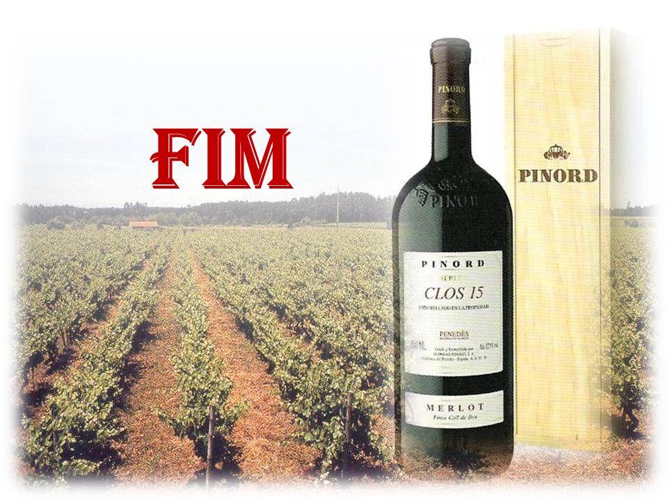 E no Penedés, também, se produz Merlot de excelente qualidade, resultando em vinhos com personalidade, requinte, completando os mais exigentes paladar