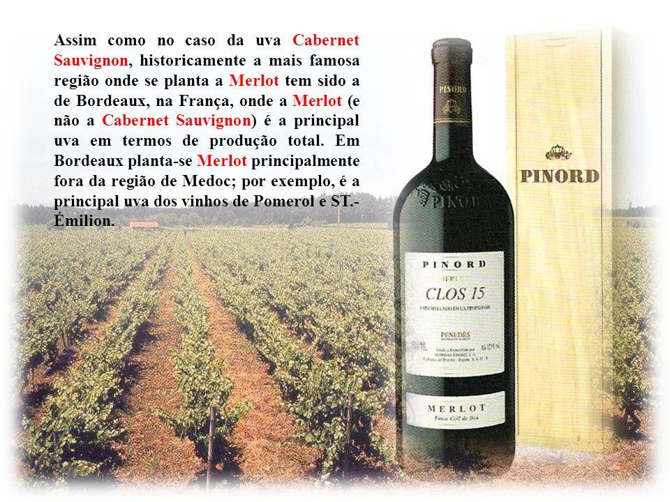 De sabor muito semelhante ao do Cabernet Sauvignon, o Merlot - nome significa pequeno Melro – é facilmente confundido com o Cabernet Sauvignon nas pro