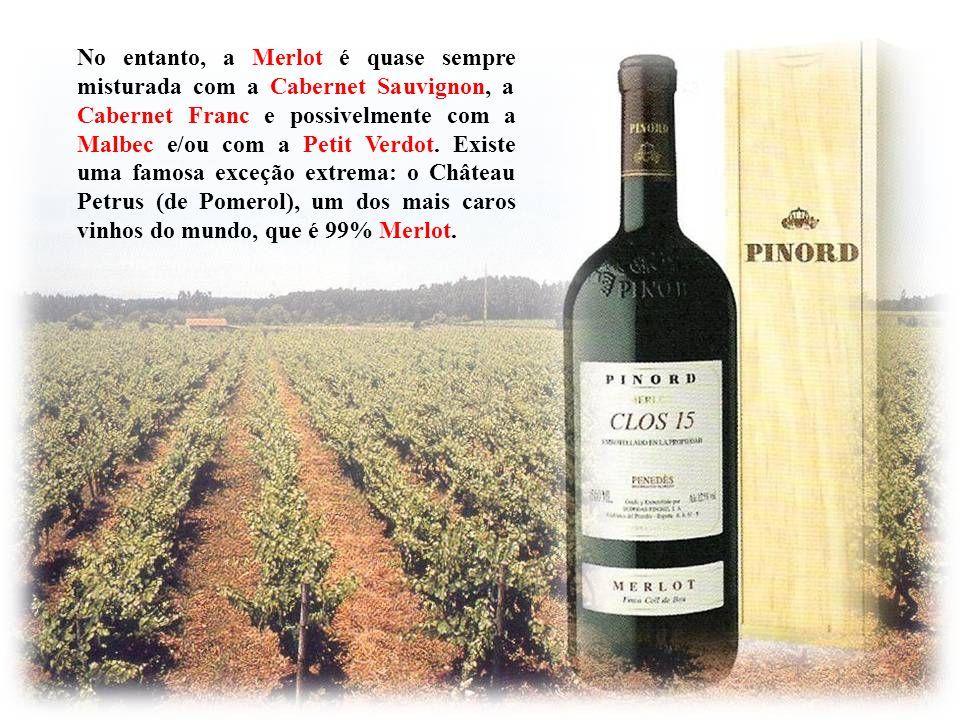 Assim como no caso da uva Cabernet Sauvignon, historicamente a mais famosa região onde se planta a Merlot tem sido a de Bordeaux, na França, onde a Me