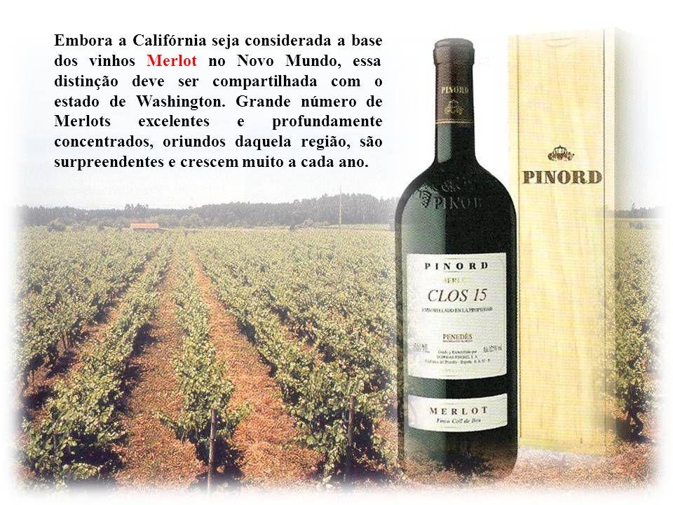 Quando as uvas Merlot de grandes vinhedos amadurecem plenamente, o tanino aparece como relativamente macio e redondo ao paladar. Dito isto, a Merlot n