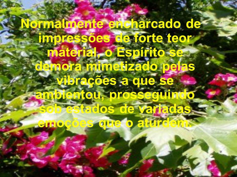 ESPÍRITO: MANOEL P. DE MIRANDA FONTE: TEMAS DA VIDA E DA MORTE FEB