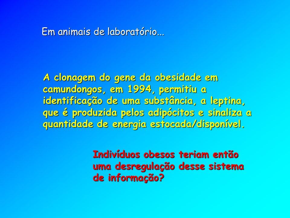 A clonagem do gene da obesidade em camundongos, em 1994, permitiu a identificação de uma substância, a leptina, que é produzida pelos adipócitos e sinaliza a quantidade de energia estocada/disponível.