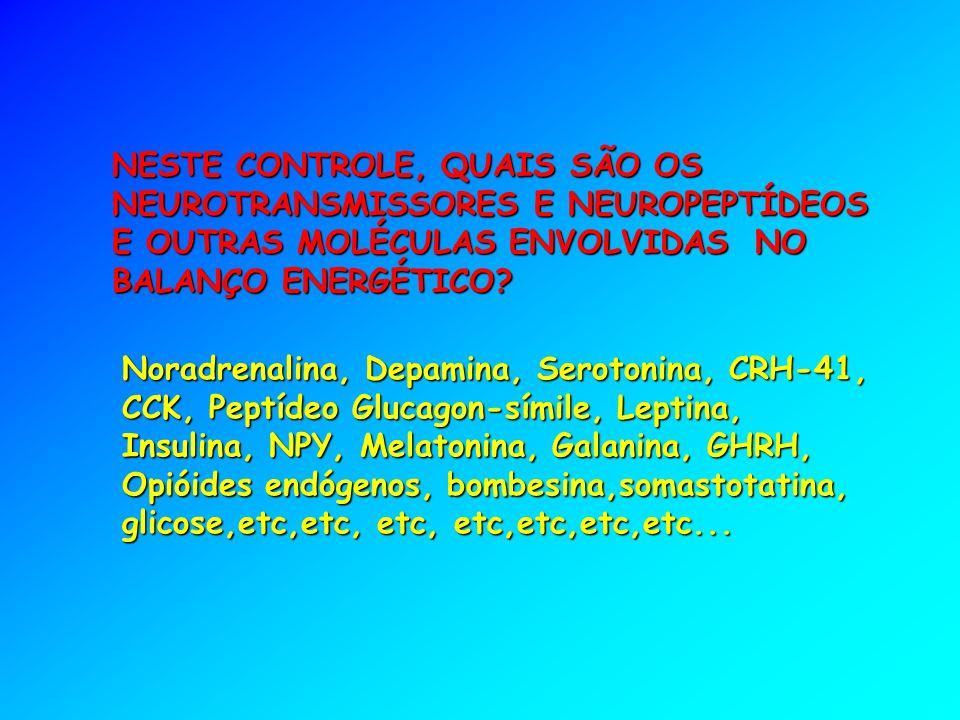 NESTE CONTROLE, QUAIS SÃO OS NEUROTRANSMISSORES E NEUROPEPTÍDEOS E OUTRAS MOLÉCULAS ENVOLVIDAS NO BALANÇO ENERGÉTICO.