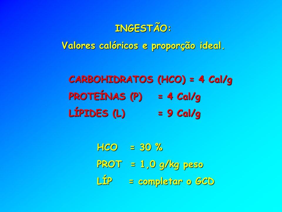 INGESTÃO: Valores calóricos e proporção ideal.