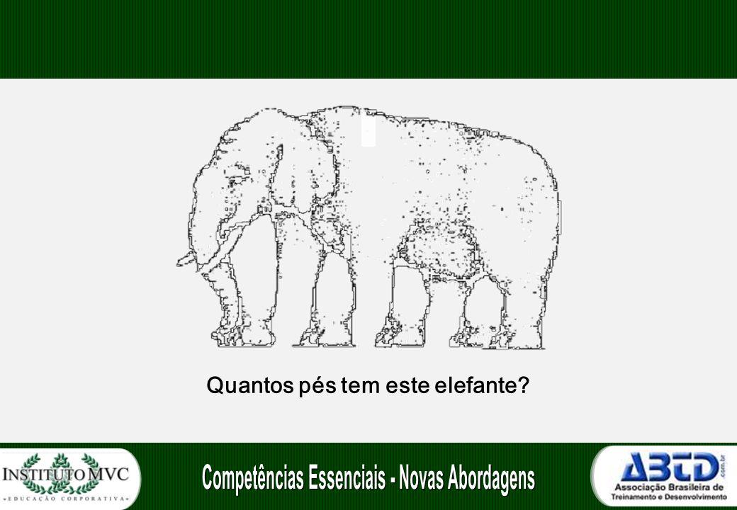 Quantos pés tem este elefante?
