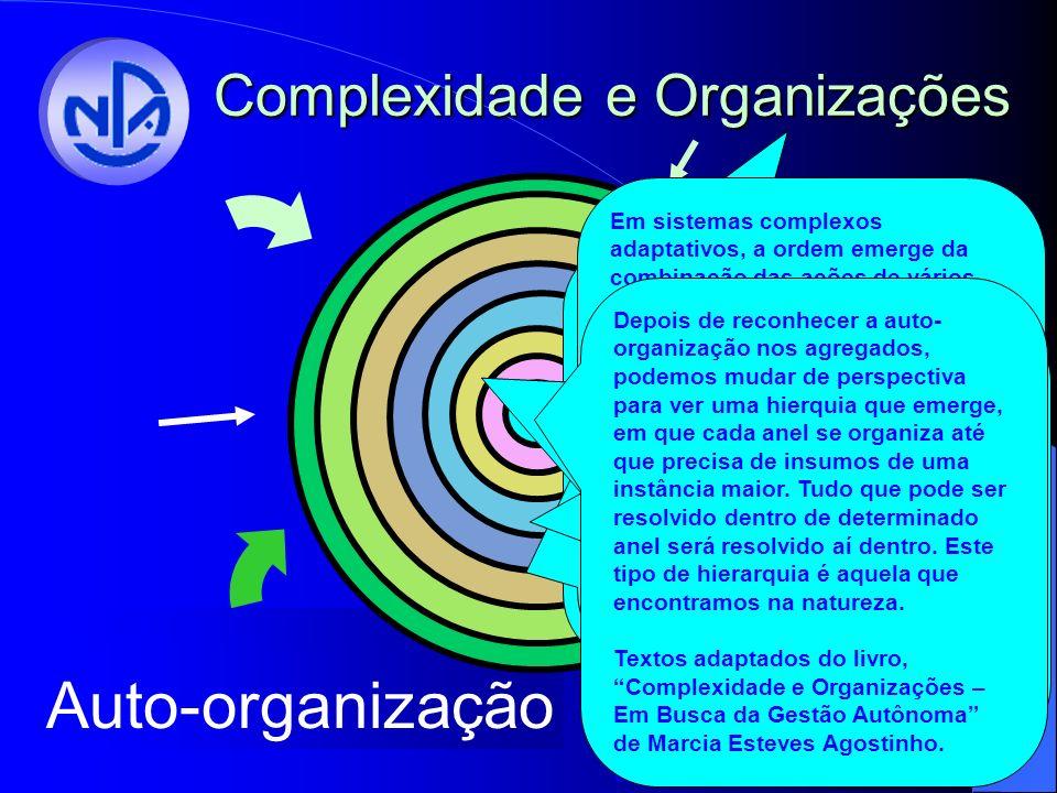 Autonomia Colaboração Agregação Auto-organização Complexidade e Organizações Agora, falando do futuro, o Núcleo está experimentando uma grande afinidade com trabalhos na área de complexidade.