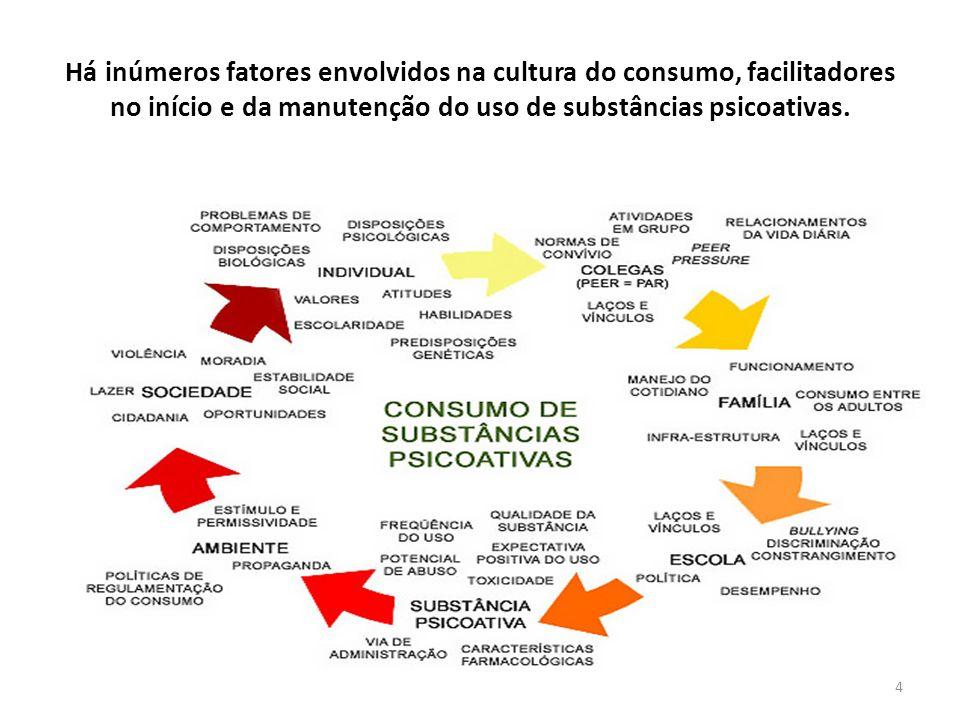 4 4 Há inúmeros fatores envolvidos na cultura do consumo, facilitadores no início e da manutenção do uso de substâncias psicoativas.