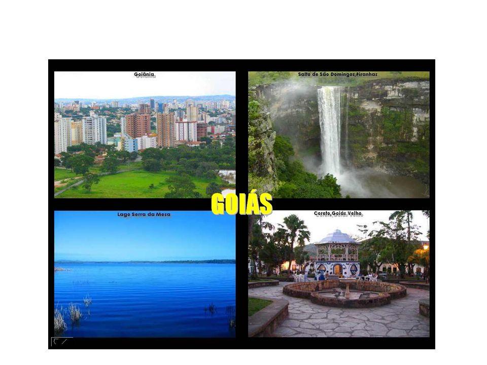 CENTRO OESTE O turismo da região Centro-Oeste é uma atividade que está se expandindo bastante.
