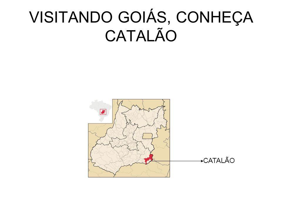 NOSSA QUERIDA CATALÃO Características GEOGRÁFICAS Área3.777,652 km²Áreakm² População85.680hab.