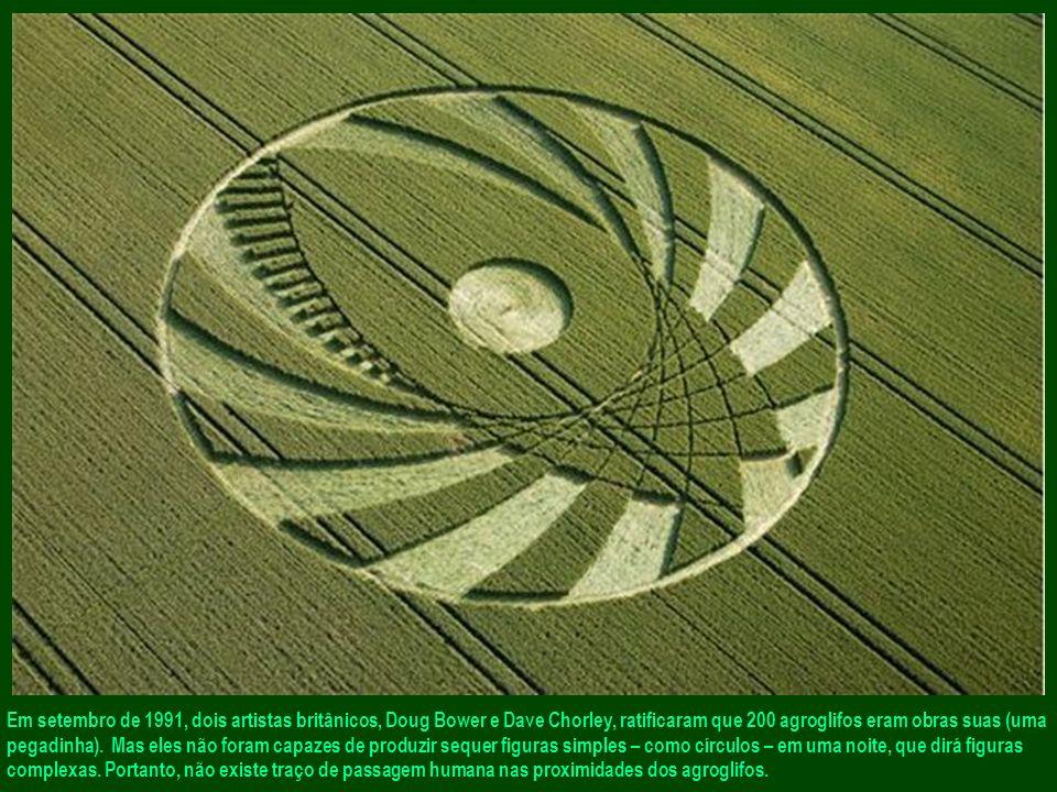 Terceiro argumento que acentua o mistério da autoria dos agroglifos: o curto tempo de realização.