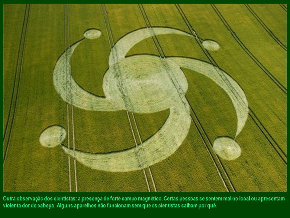 Os cientistas analisaram certos locais. Constataram que as plantas de cereais foram modificadas e desidratadas por uma elevação brutal de temperatura.