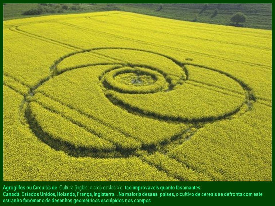 Agroglifos ou Círculos de Cultura (inglês: « crop circles ») : tão improváveis quanto fascinantes.