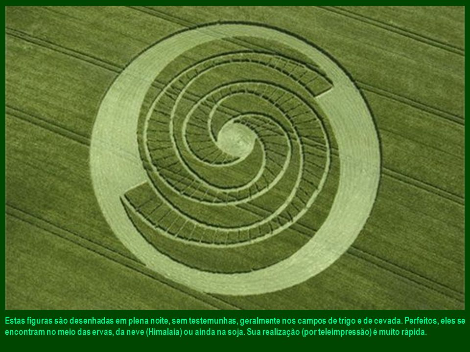 Estas figuras são desenhadas em plena noite, sem testemunhas, geralmente nos campos de trigo e de cevada.