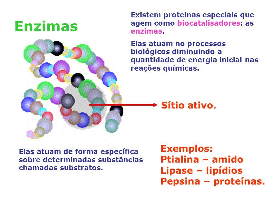 Enzimas Existem proteínas especiais que agem como biocatalisadores: as enzimas.