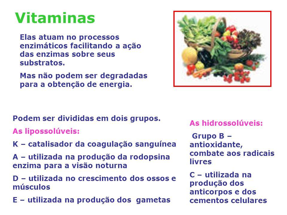 Vitaminas Elas atuam no processos enzimáticos facilitando a ação das enzimas sobre seus substratos.