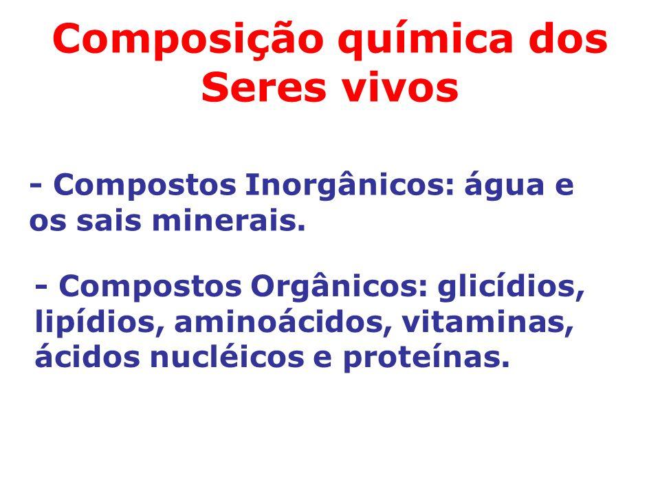 Composição química dos Seres vivos - Compostos Inorgânicos: água e os sais minerais.