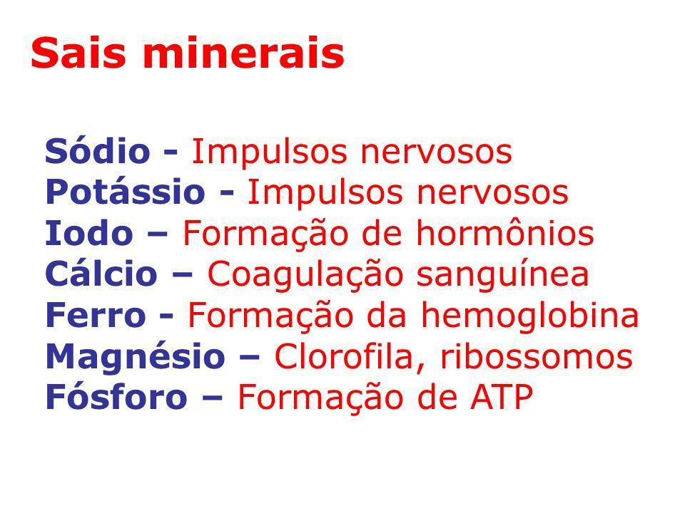 Sais minerais Sódio - Impulsos nervosos Potássio - Impulsos nervosos Iodo – Formação de hormônios Cálcio – Coagulação sanguínea Ferro - Formação da hemoglobina Magnésio – Clorofila, ribossomos Fósforo – Formação de ATP