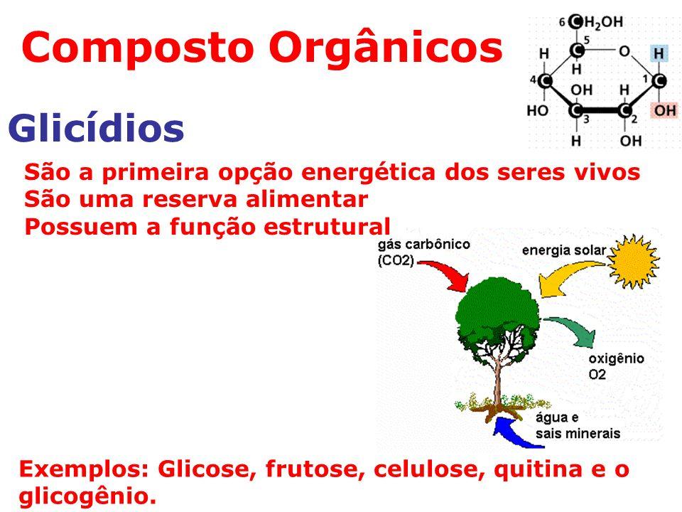 Composto Orgânicos Glicídios Exemplos: Glicose, frutose, celulose, quitina e o glicogênio.