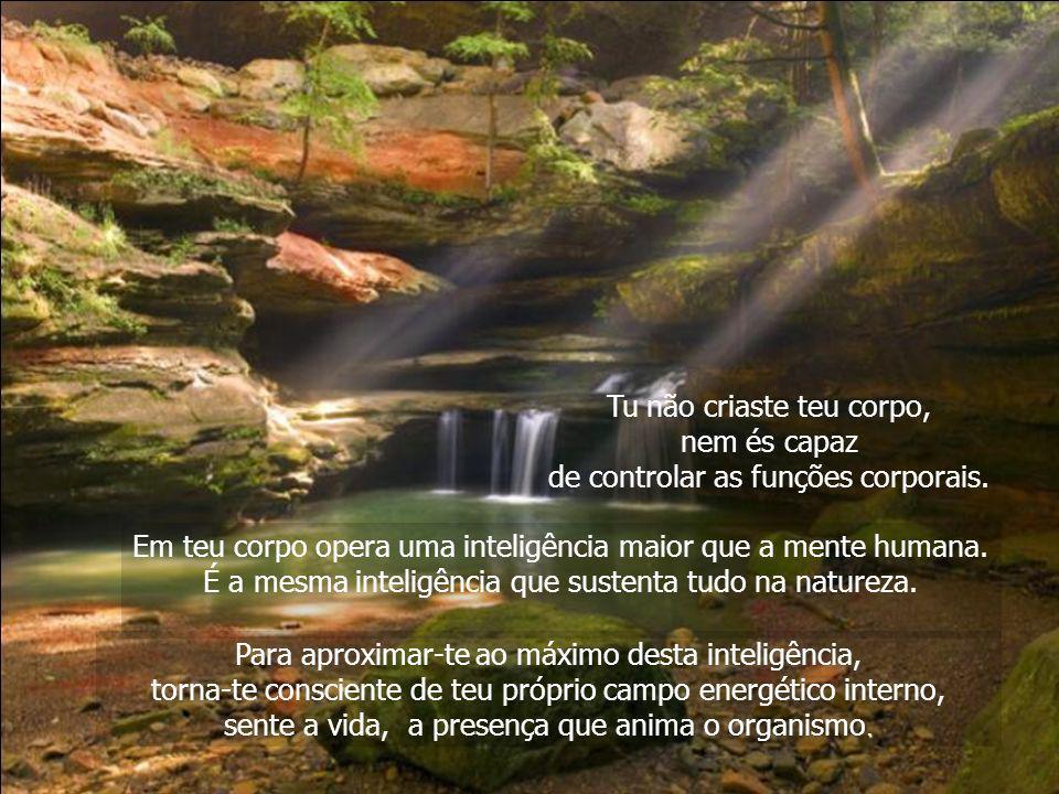 Todas as coisas naturais, além de estarem unificadas consigo mesmas, estão unificadas com a totalidade. Não se afastaram da totalidade exigindo uma ex