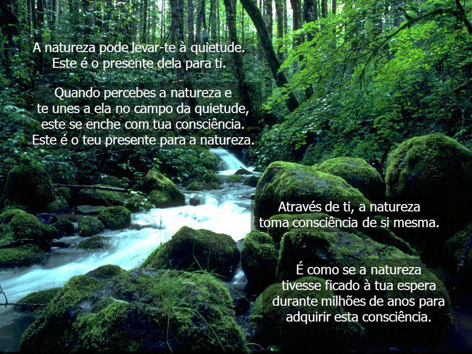 Pensar é uma etapa na evolução da vida. A natureza existe em uma quietude inocente que é anterior à aparição do pensamento. Quando os seres humanos se