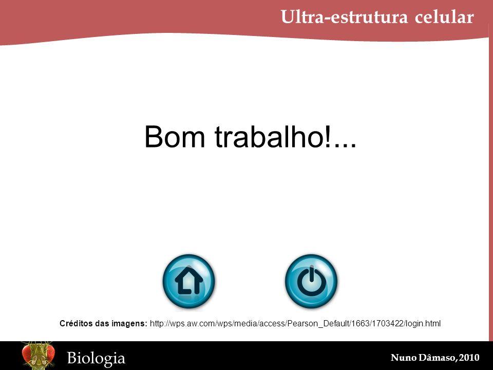 www.BioEdOnline.org Biologia Nuno Dâmaso, 2010 Ultra-estrutura celular Bom trabalho!... Créditos das imagens: http://wps.aw.com/wps/media/access/Pears