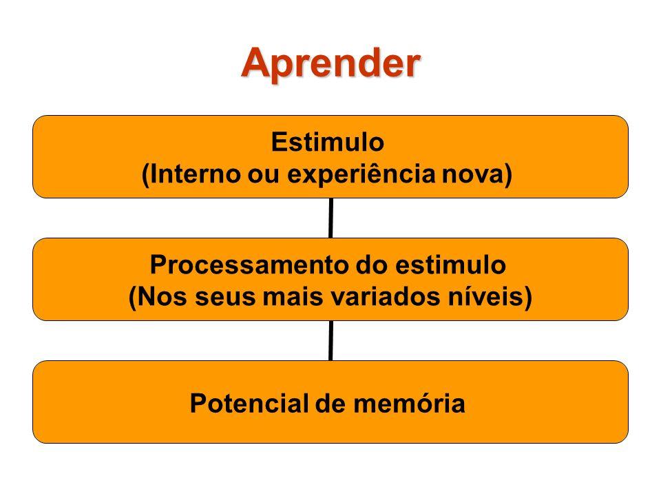 Aprender Estimulo (Interno ou experiência nova) Processamento do estimulo (Nos seus mais variados níveis) Potencial de memória