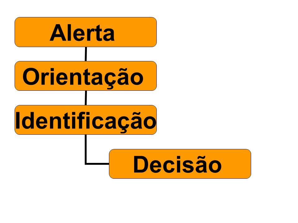 Alerta Orientação Identificação Decisão