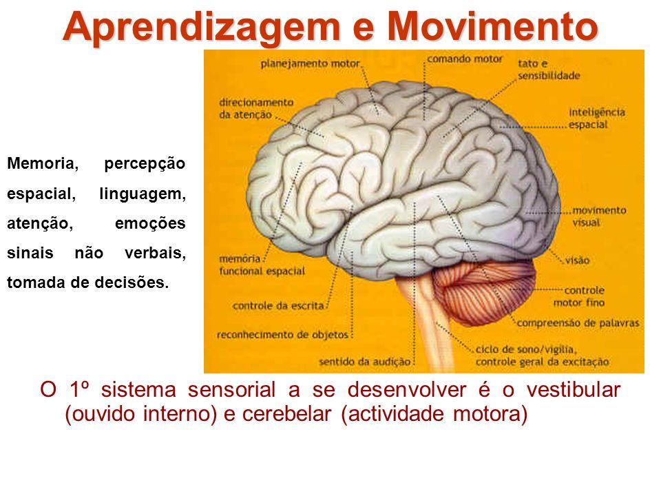 Aprendizagem e Movimento O 1º sistema sensorial a se desenvolver é o vestibular (ouvido interno) e cerebelar (actividade motora) Memoria, percepção espacial, linguagem, atenção, emoções sinais não verbais, tomada de decisões.