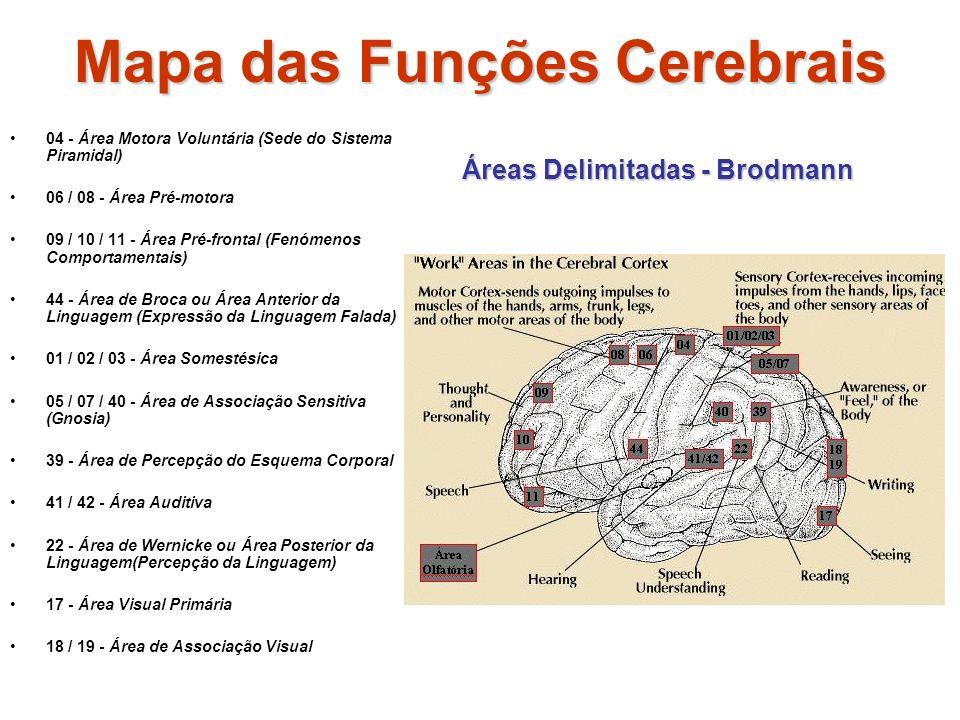 Mapa das Funções Cerebrais 04 - Área Motora Voluntária (Sede do Sistema Piramidal) 06 / 08 - Área Pré-motora 09 / 10 / 11 - Área Pré-frontal (Fenómenos Comportamentais) 44 - Área de Broca ou Área Anterior da Linguagem (Expressão da Linguagem Falada) 01 / 02 / 03 - Área Somestésica 05 / 07 / 40 - Área de Associação Sensitiva (Gnosia) 39 - Área de Percepção do Esquema Corporal 41 / 42 - Área Auditiva 22 - Área de Wernicke ou Área Posterior da Linguagem(Percepção da Linguagem) 17 - Área Visual Primária 18 / 19 - Área de Associação Visual Áreas Delimitadas - Brodmann