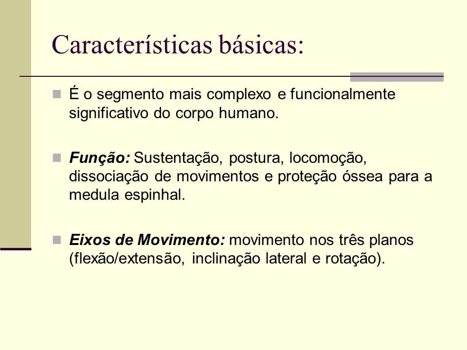 Características básicas: É o segmento mais complexo e funcionalmente significativo do corpo humano. Função: Sustentação, postura, locomoção, dissociaç