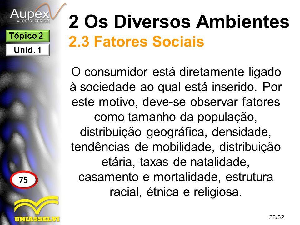 2 Os Diversos Ambientes 2.3 Fatores Sociais O consumidor está diretamente ligado à sociedade ao qual está inserido. Por este motivo, deve-se observar