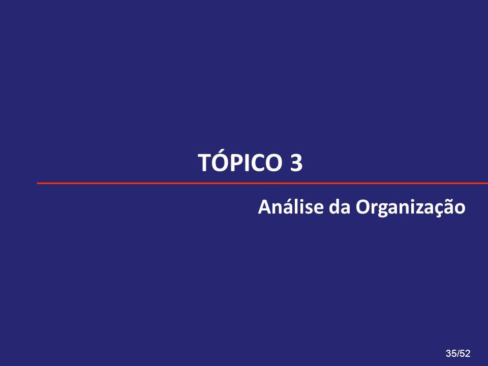 TÓPICO 3 35/52 Análise da Organização
