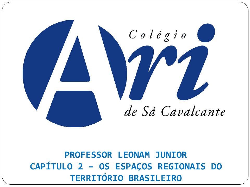 PROFESSOR LEONAM JUNIOR CAPÍTULO 2 – OS ESPAÇOS REGIONAIS DO TERRITÓRIO BRASILEIRO