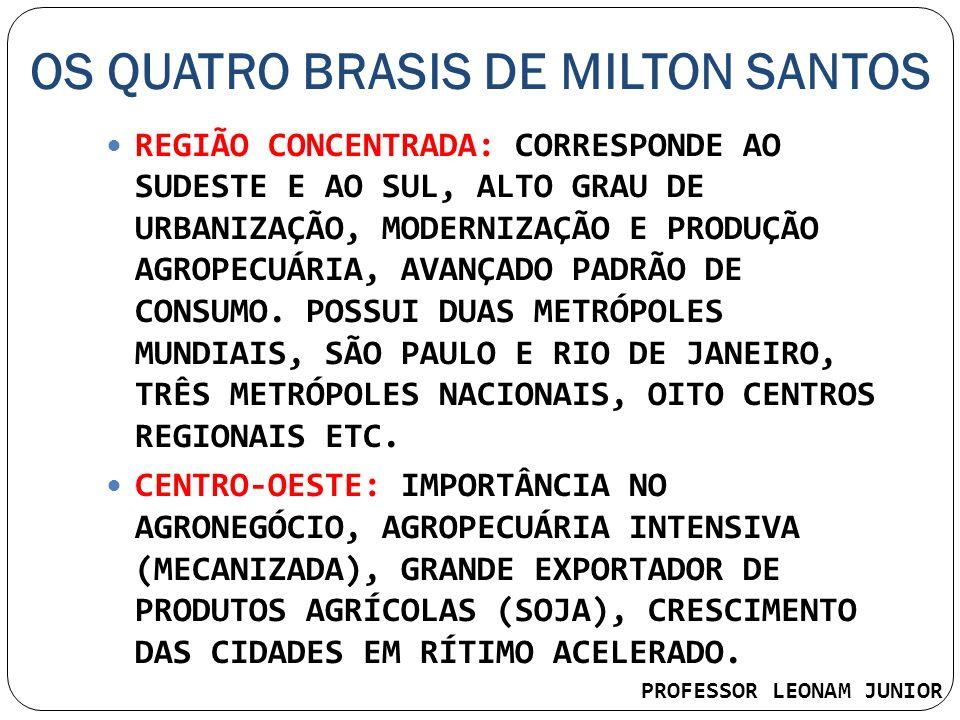 OS QUATRO BRASIS DE MILTON SANTOS REGIÃO CONCENTRADA: CORRESPONDE AO SUDESTE E AO SUL, ALTO GRAU DE URBANIZAÇÃO, MODERNIZAÇÃO E PRODUÇÃO AGROPECUÁRIA,
