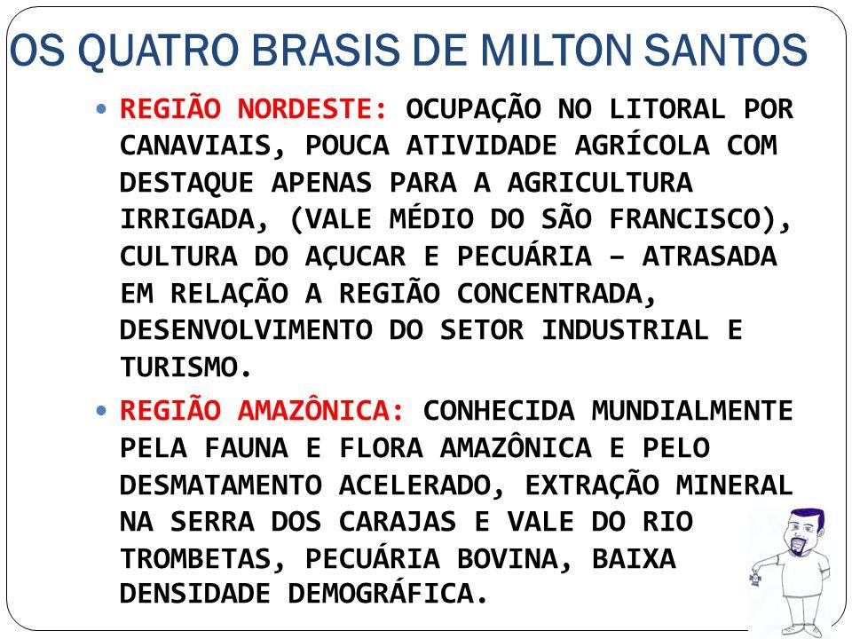 OS QUATRO BRASIS DE MILTON SANTOS REGIÃO NORDESTE: OCUPAÇÃO NO LITORAL POR CANAVIAIS, POUCA ATIVIDADE AGRÍCOLA COM DESTAQUE APENAS PARA A AGRICULTURA