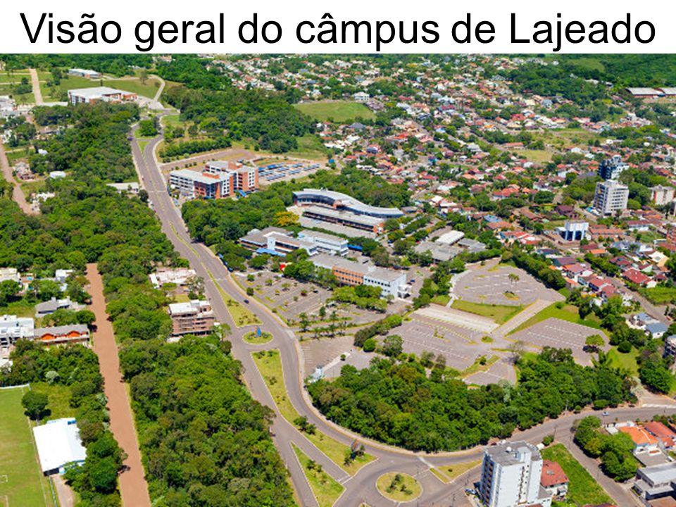 A Universidade deve proporcionar: