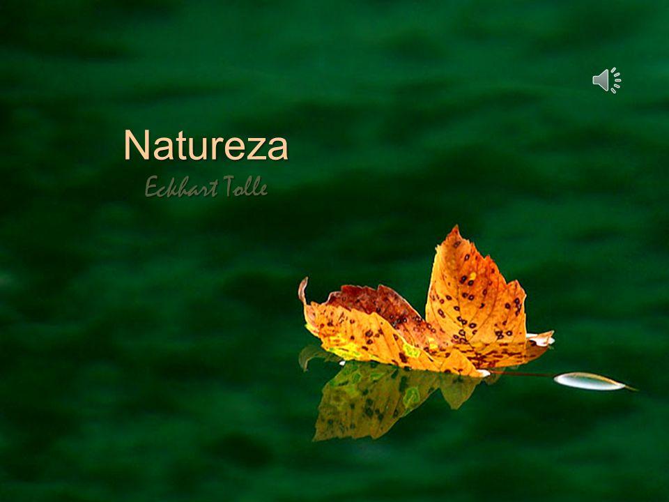 Quando percebes a natureza tão só através da mente, através do pensamento, não podes sentir tua plenitude de vida, teu ser.