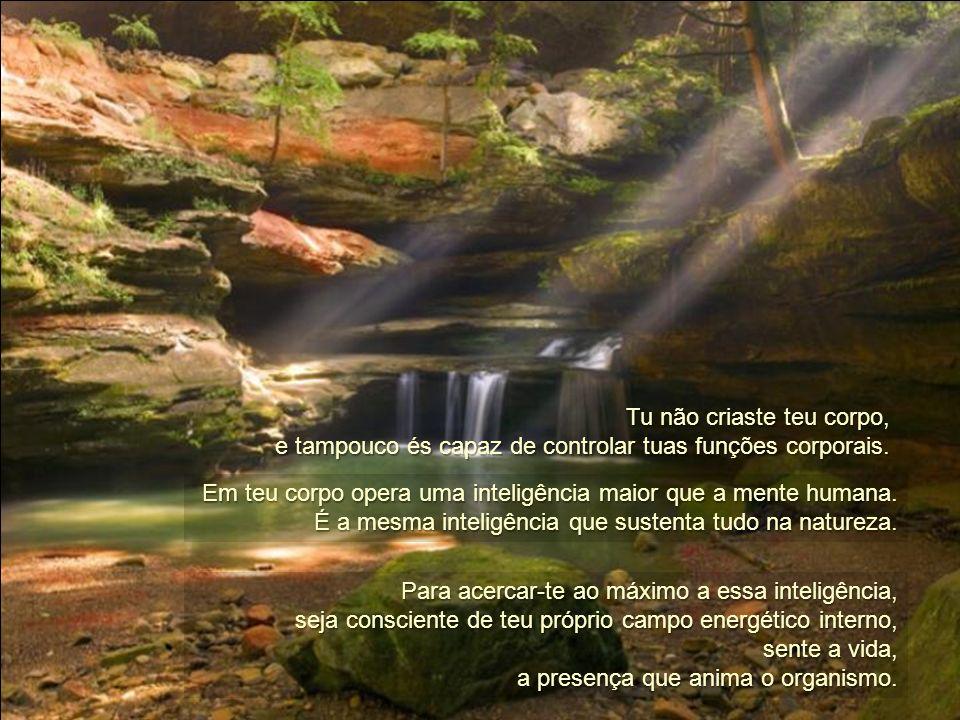 Todas as coisas naturais, além de estar unidas consigo mesmas, estão unidas com a totalidade das coisas. Não se afastaram da totalidade reclamando uma
