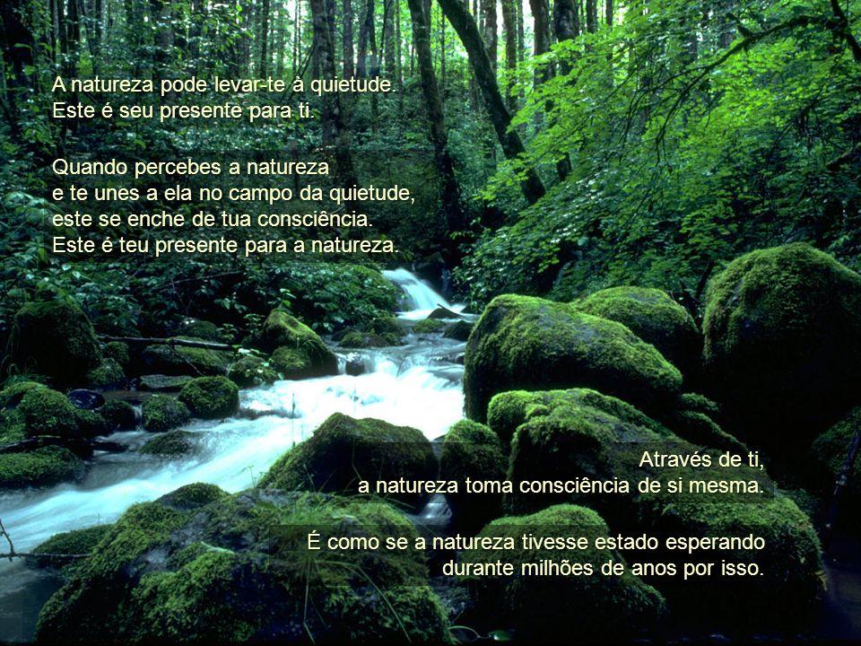 Pensar é uma etapa na evolução da vida. A natureza existe em uma quietude inocente que é anterior ao surgimento do pensamento. Quando Quando os seres