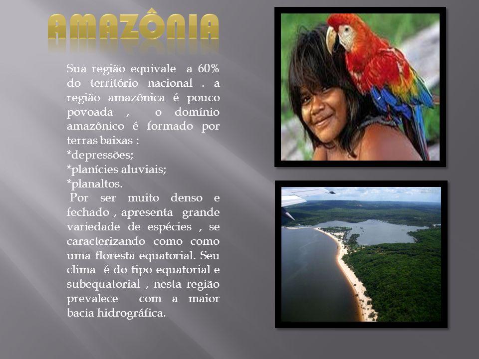 Sua região equivale a 60% do território nacional. a região amazônica é pouco povoada, o domínio amazônico é formado por terras baixas : *depressões; *