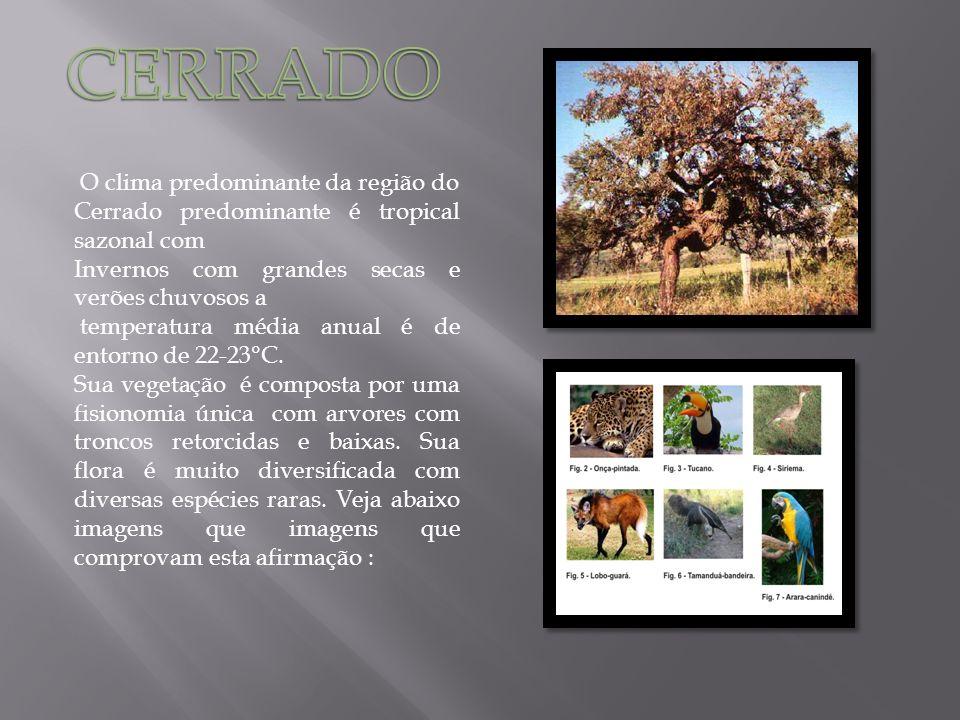 O clima predominante da região do Cerrado predominante é tropical sazonal com Invernos com grandes secas e verões chuvosos a temperatura média anual é