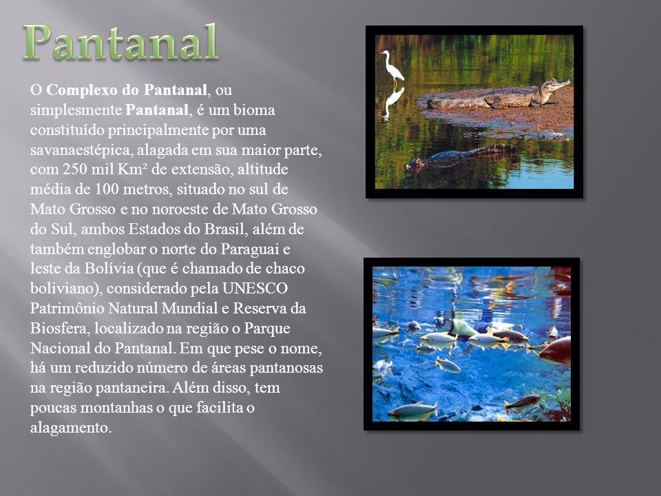 O Complexo do Pantanal, ou simplesmente Pantanal, é um bioma constituído principalmente por uma savanaestépica, alagada em sua maior parte, com 250 mi