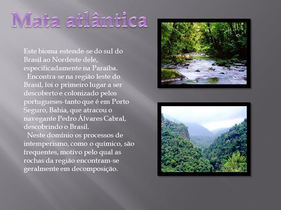 Este bioma estende-se do sul do Brasil ao Nordeste dele, especificadamente na Paraíba. Encontra-se na região leste do Brasil, foi o primeiro lugar a s