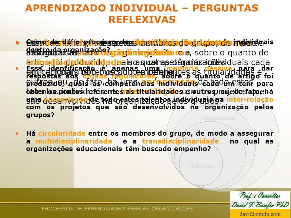Prof. David Bomfin PhD Agosto 2003 Ambiente Externo Organização Grupo Indivíduo APRENDIZADO INDIVIDUAL – PERGUNTAS REFLEXIVAS Como se dá o processo de