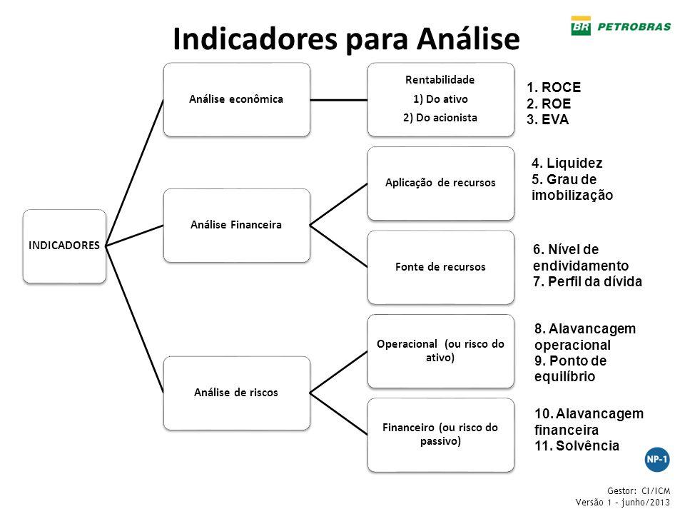 Gestor: CI/ICM Versão 1 – junho/2013 INDICADORESAnálise econômica Rentabilidade 1) Do ativo 2) Do acionista Análise FinanceiraAplicação de recursosFon