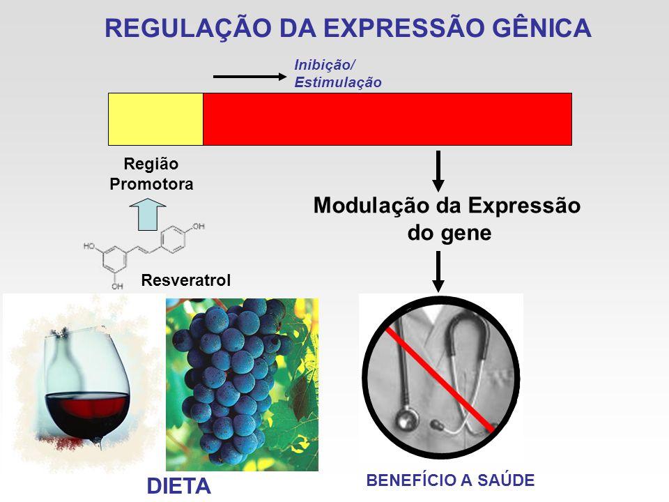REGULAÇÃO DA EXPRESSÃO GÊNICA Região Promotora Modulação da Expressão do gene Inibição/ Estimulação Resveratrol DIETA BENEFÍCIO A SAÚDE