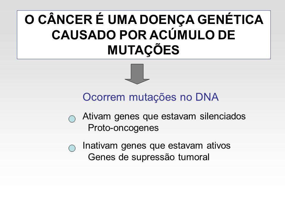 O CÂNCER É UMA DOENÇA GENÉTICA CAUSADO POR ACÚMULO DE MUTAÇÕES Ocorrem mutações no DNA Ativam genes que estavam silenciados Proto-oncogenes Inativam g