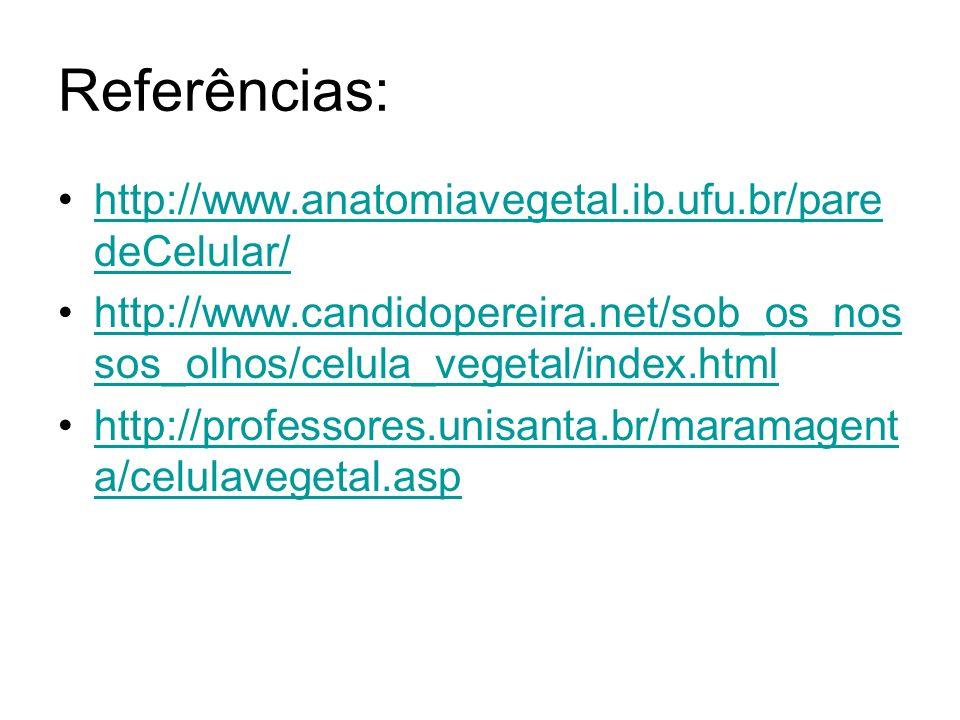 Referências: http://www.anatomiavegetal.ib.ufu.br/pare deCelular/http://www.anatomiavegetal.ib.ufu.br/pare deCelular/ http://www.candidopereira.net/sob_os_nos sos_olhos/celula_vegetal/index.htmlhttp://www.candidopereira.net/sob_os_nos sos_olhos/celula_vegetal/index.html http://professores.unisanta.br/maramagent a/celulavegetal.asphttp://professores.unisanta.br/maramagent a/celulavegetal.asp