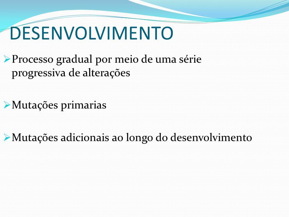 DESENVOLVIMENTO Processo gradual por meio de uma série progressiva de alterações Mutações primarias Mutações adicionais ao longo do desenvolvimento
