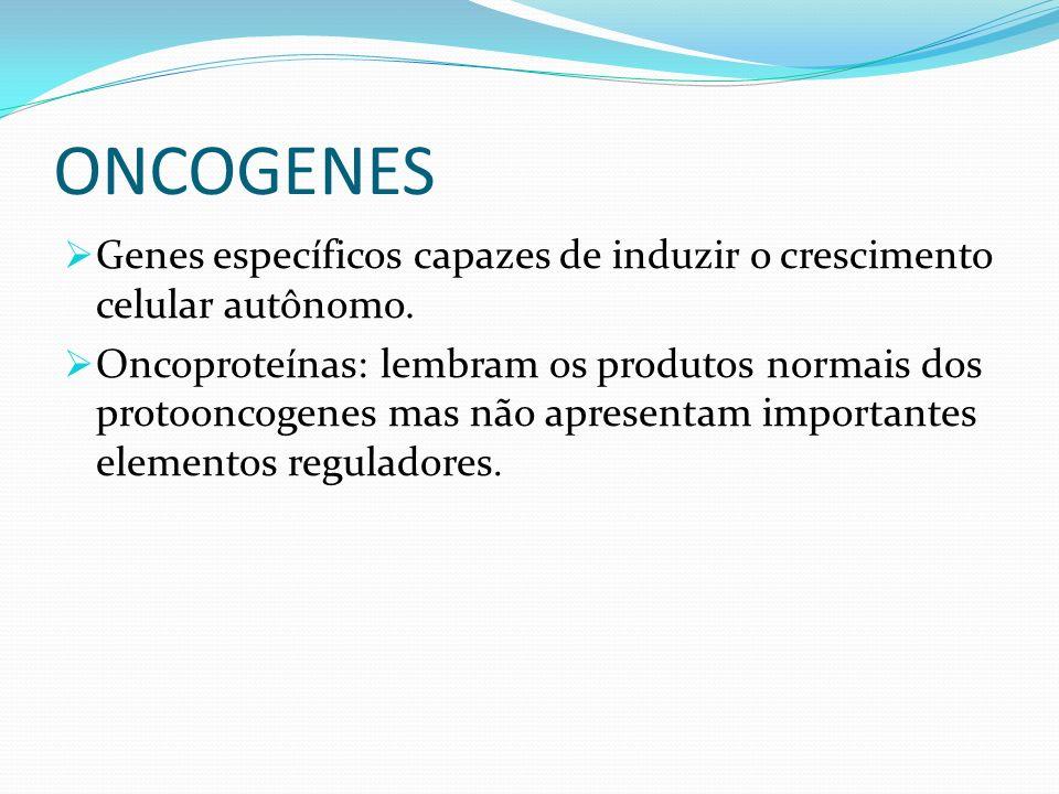 ONCOGENES Genes específicos capazes de induzir o crescimento celular autônomo. Oncoproteínas: lembram os produtos normais dos protooncogenes mas não a